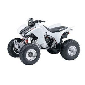 TRX 300 EX